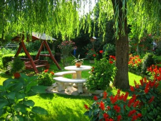 flores-bonitas-rojas-jardin-banco-columpio-mesa