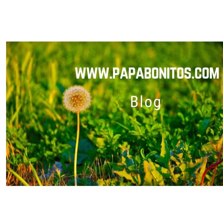 papabonitos.com1